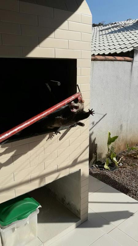 3ed4415f73 Homem cai de cima de residência no balneário Paese e é socorrido ...